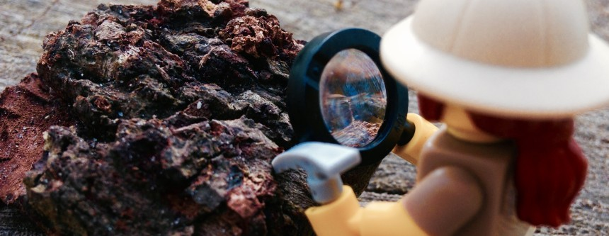 Paleontologist at work - LEGO Minifigures, Series 13